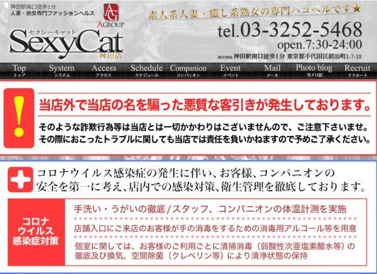 秋葉原のオススメ風俗店・SexyCat(セクシーキャット)